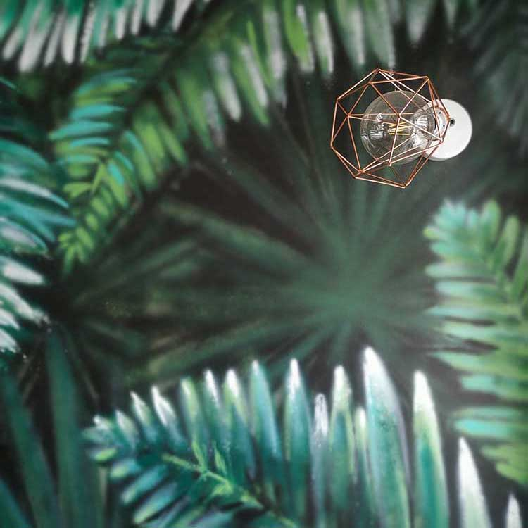 immagine evidenza foresta pluviale disegnata